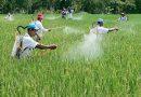 Residu Pestisida pada Produk Pertanian