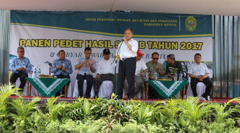 Kabupaten Bantul Selenggarakan Gebyar Siwab dan Panen Pedet