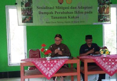 Sosialisasi Mitigasi dan Adaptasi Dampak Perubahan Iklim pada Perkebunan Kakao